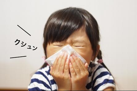 子供のアレルギーがひどくなってきた。害獣の多くは病原体やダニやノミを持っており、アレルギーや ぜんそくなどの原因になります。 しっかりとした除去・除菌が大切なのです!